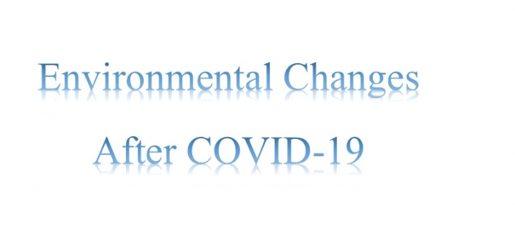 "International scientific symposium""Environmental Changes After COVID-19"""""""